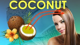 Coconut Oil For Hair Growth Before And After /  Coconut Oil for Hair Growth/ Loss men, guys