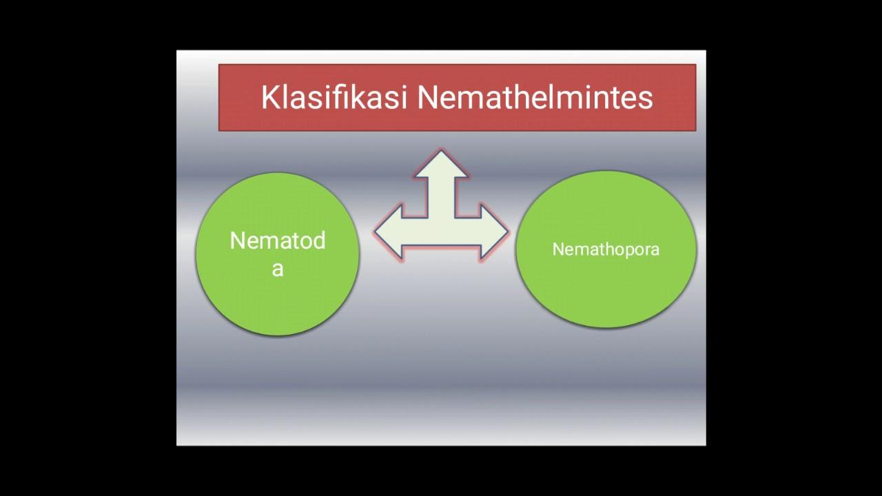 iridológiai diagram paraziták)