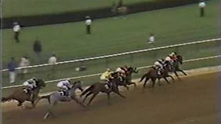 1980 Preakness Stakes: Another Angle Of