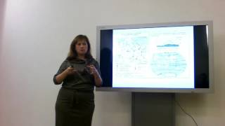 видео Онлайн тест ЕГЭ по географии 2017