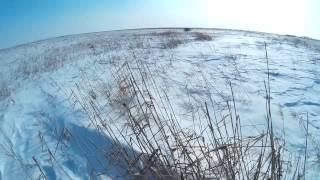 Охота на зайца в Башкирии