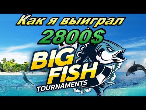 Разбор турнира BIG Fish за 16.5$, как выигрываются многостоловые турниры?
