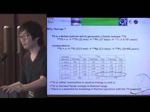 Sang-In Bak - Neutronic Analysis & Transmutation Performance of Thorium Fuels @ ThEC12