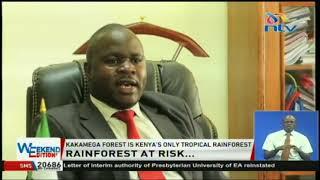 Kakamega forest, 'Crying stone' threatened by human invasion