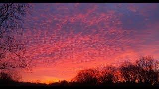 Barbara Dane & Osamu: Good Morning Blues