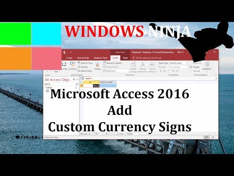 Microsoft Access 2016 Add Custom Currency Signs and Symbols