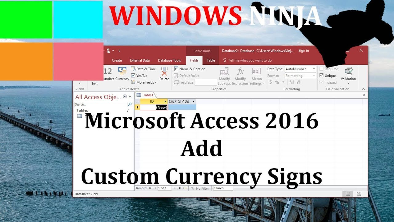 Microsoft Access 2016 Add Custom Currency Signs And Symbols Youtube