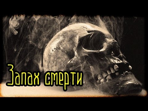 Запах смерти (Страшная История)