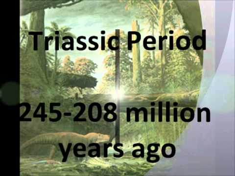 Prehistoric Timeline