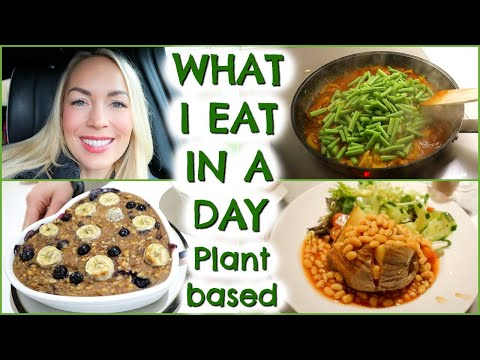 WHAT I EAT IN A DAY: PLANT BASED EDITION  |  EMILY NORRIS