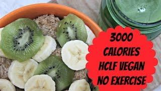 what i eat in a day   hclf vegan   3 000 calories no exercise no restriction   day 30 of 30