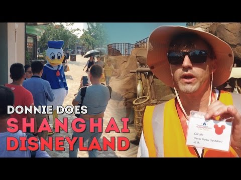 Working at Shanghai Disneyland as a Sanitation Officer/Donald Duck