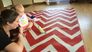VERY CUTE AND FUNNY BABY