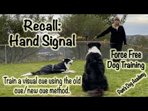 Train a Visual Recall Cue: Old Cue New Cue Method