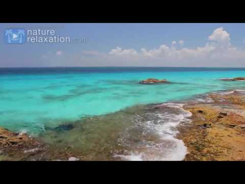 BEYOND BLUE 4K Mexico Reef Relaxation Nature Relaxation Video 1 HR UHD