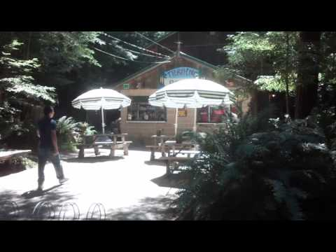 Gualala River Redwood RV Park - Review