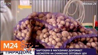 Смотреть видео Картошка подорожала на московских прилавках - Москва 24 онлайн