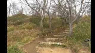 六甲山(保久良神社から金鳥山・七兵衛山・打越山・十文字山)