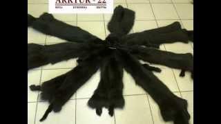 Шкуры лисы чёрной крашенной(Сайт: www.arktur-22.ru Компания ARKTUR-22 предлагает Вам купить Шкуры лисы чёрной крашенной, фабричной выделки...., 2012-08-24T04:22:24.000Z)