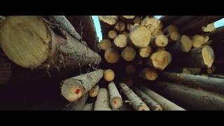 DREWNEX Domy drewniane - Producent domów z drewna