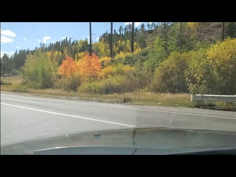 The Leaves Are Changing Fast In Grand Lake, CO. A Quick Look At My Home Town!.