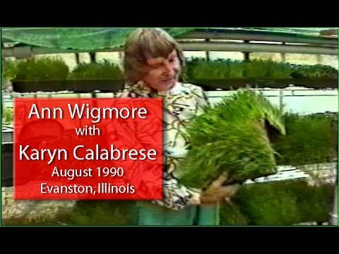 Ann Wigmore on the Health Benefits of Wheatgrass and Raw Foods.