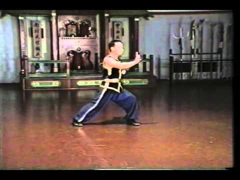 Hung Gar Kuen - Tiger and Crane Sample