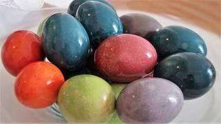 Bojanje jaja sa 100% prirodnim bojama/Dye easter eggs with 100% natural colors