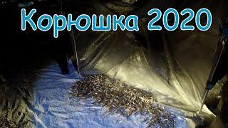 Рыбалка на реке Амур Зимняя рыбалка 2020 Корюшка Хамса