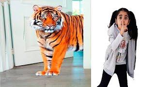 çocuklar gerçekten evcil hayvan istiyorlar خافت من النمر !!!