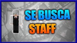 Servidor SE BUSCA STAFF Network Host 24/7