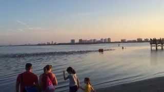 Aunt Catfish Triathlon - This time a Relay