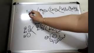 Class 11 Part- 1 Tricks ka Pitaara of S Block Chemistry