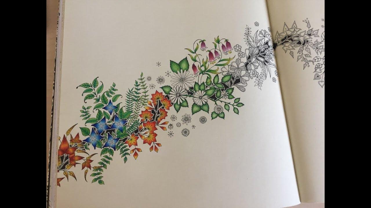 12 Stifte - Johanna Basford's Secret Garden - Beginner Tutorial - Part 3