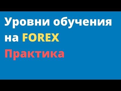 Практика на FOREX. Уровни обучения на FOREX