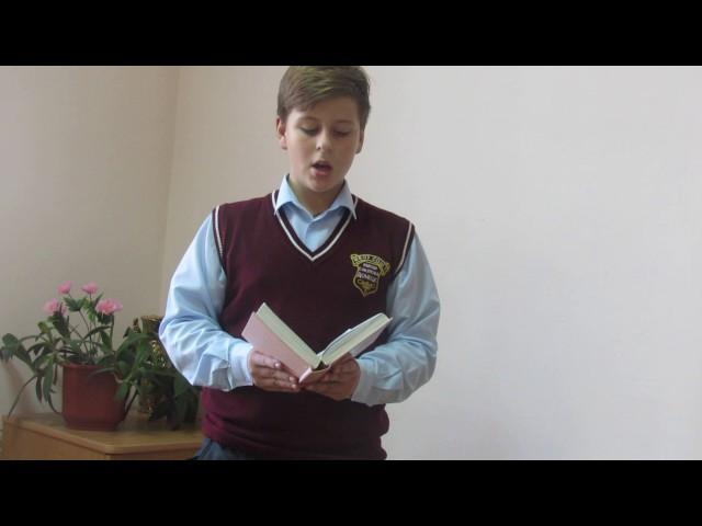Изображение предпросмотра прочтения – ЕгорДорошев читает произведение «Ветви (Ветви склонялись в моё окно…)» В.Я.Брюсова