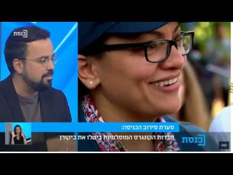 Prof. Gerald Steinberg, Panel Discussion, Tlaib/Omar August 18, 2019 HEBREW