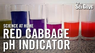 The Sci Guys: Science at Home - SE2 - EP4: Red Cabbage pH Indicator - Acid Base Indicator