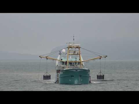 Valenta Mussel Fishing Boat Bangor Gwynedd Wales UK