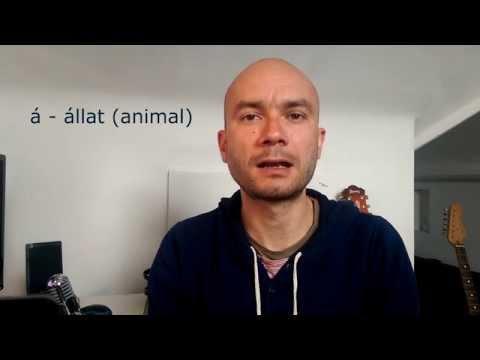 Hungarian pronunciation practice