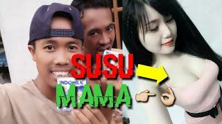 """Download Video """"SUSU MAMA"""" VIDEO LUCU BONTIK BALI MP3 3GP MP4"""