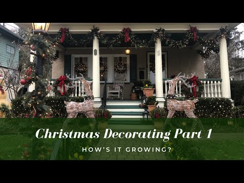 Outdoor Garden Christmas Decorating - Part 1 🦌🎄 | How's It Growing?