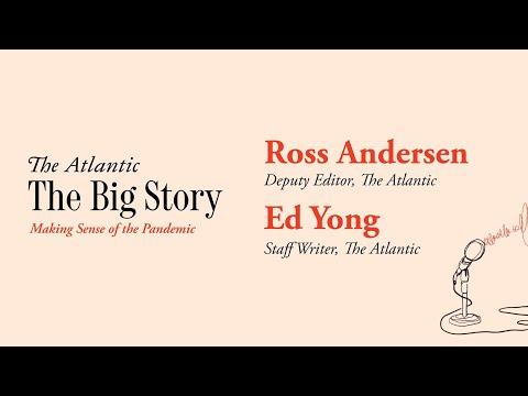 The Big Story: Making Sense Of The Pandemic