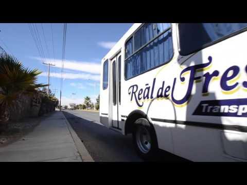 Real del Fresno - Transportación terrestre