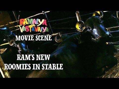 Ram's New Roomies in Stable - Ramaiya Vastavaiya Scene - Girish Kumar
