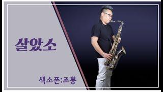 조뽕 - [살았소] 김호중 신곡 색소폰 연주 미스터트롯 트바로티