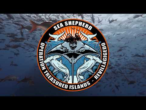 Sea Shepherd's Operation Treasured Islands.