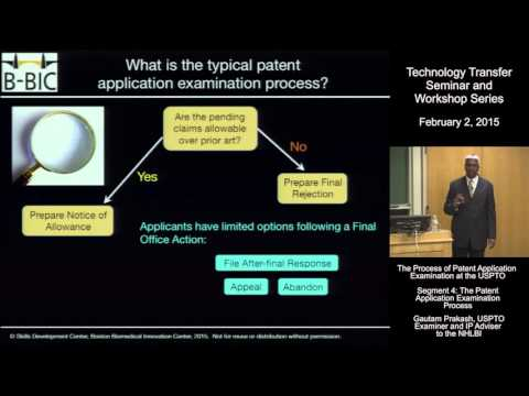 The Patent Application Examination Process
