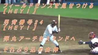 2014年4月15日 プロ野球公式戦 読売ジャイアンツ vs 東京ヤクルトスワロ...