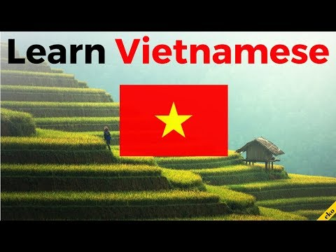 Learn Vietnamese While You Sleep 😀  Most Important Vietnamese Phrases And Words 😀 English/Vietnamese